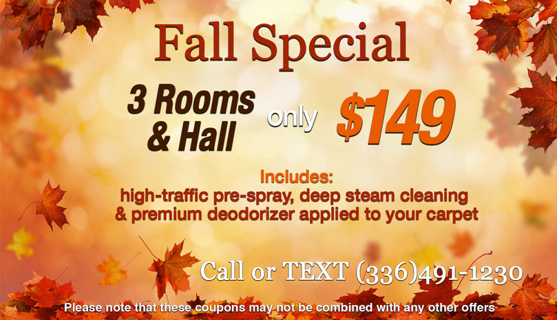 Cleaning Special - 3 rooms and a hall for $149