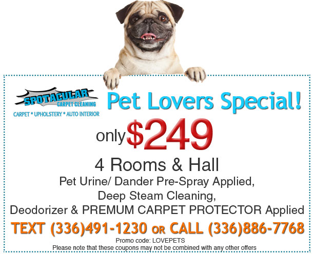 pet lovers special coupon